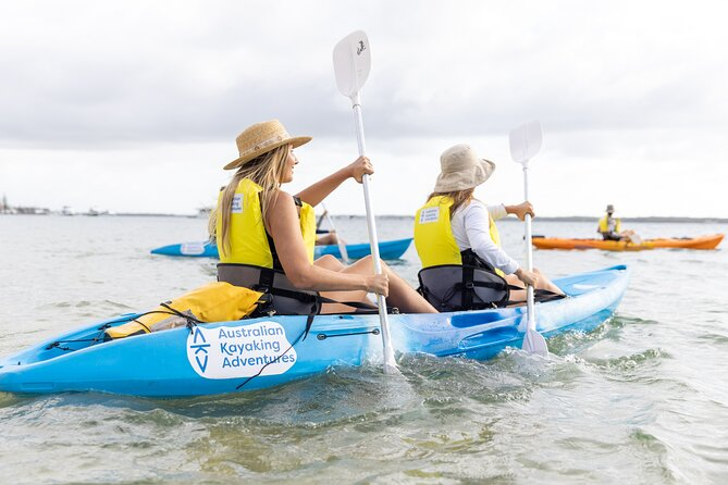 Half Day Dolphin Kayaking and Snorkeling Tour
