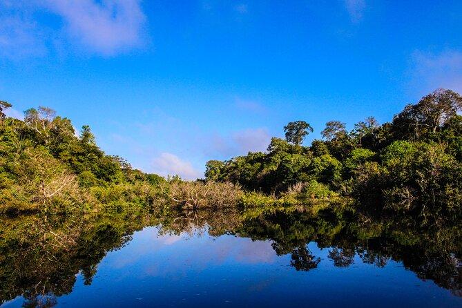 Amazon Black Caiman 3D/2N At Amazon Boto Lodge