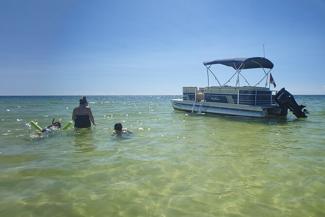 2 Hour Dolphin Sightseeing and Boat Tour in Panama City Beach