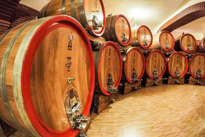 Wine Tasting Tour in Azerbaijan (Savalan ASPI)