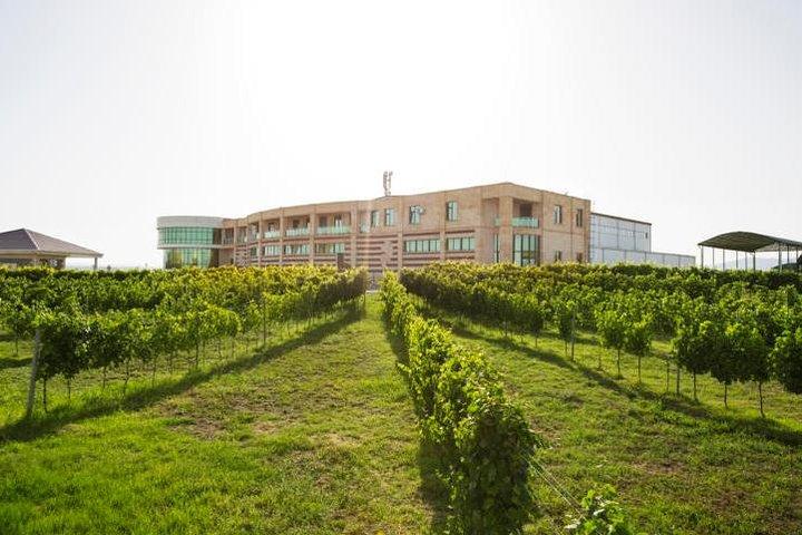 Savalan Wine Tour - Gabala