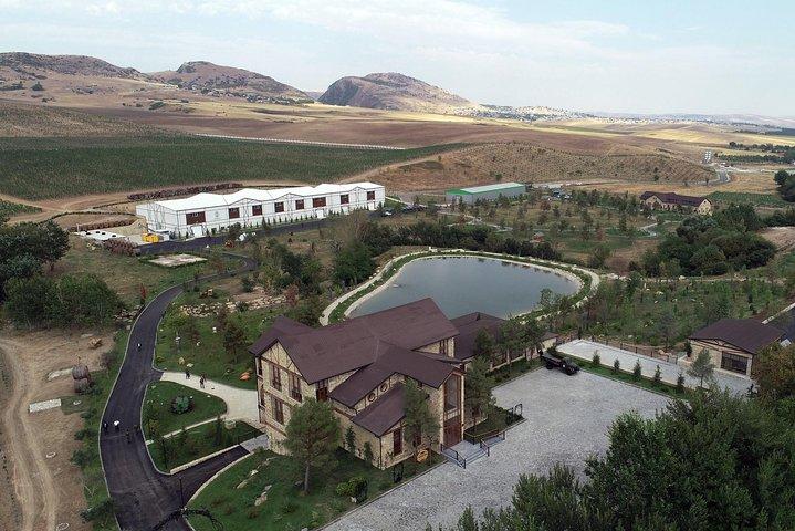 Wine tour to Shamakhi
