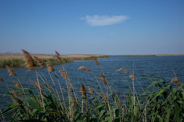 Shirvan National Park Tour