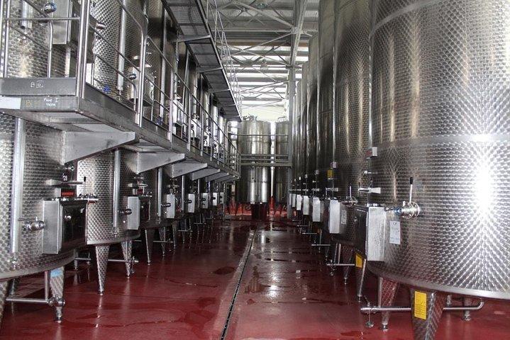 Gabala Aspi Winery Group tour