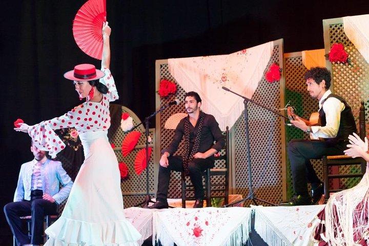 grenade-flamenco-au-centre-de-la-ville