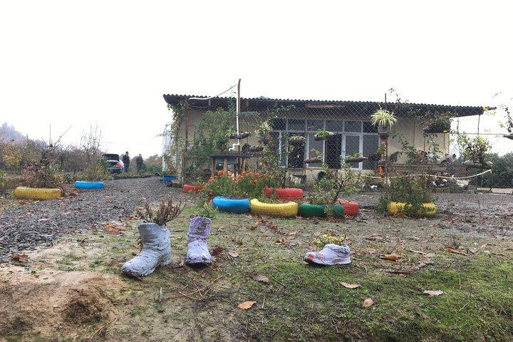 Lankaran village life