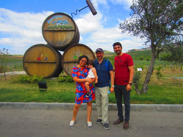 Organic Wine Tour Shamakhi with Local Lunch