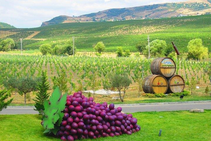 Stargazing & Organic Wine Tour Shamakhi with Local Dinner
