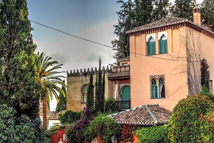 Palais islamiques de l'Albaicin : visite à pied avec billet coupe-file
