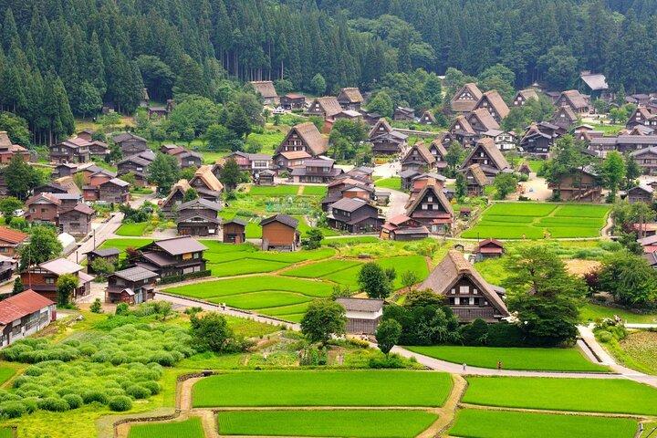 Uneven rows of gassho-zukuri houses seemingly rise from the earth in Shirakawa, Japan.