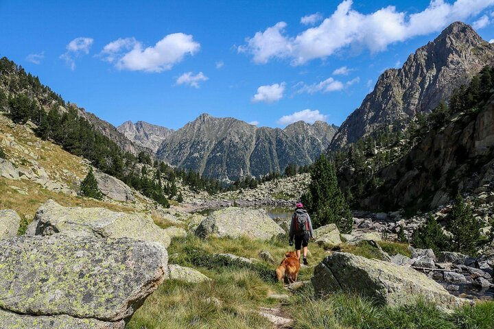 A walker and their dog enjoys the Aigüestortes i Estany de Sant Maurici National Park in Spain.