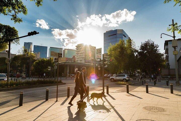 Two people walk a dog through Polanco, Mexico City.